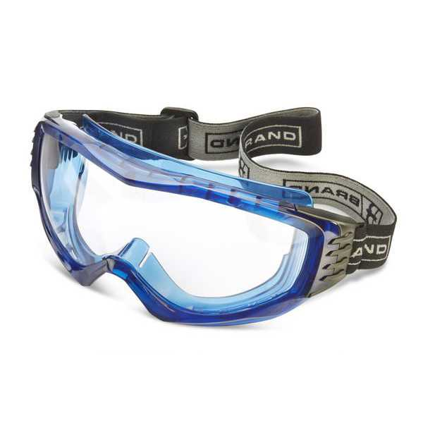 Hamilton Clear Goggles pack of 5 BBHAM